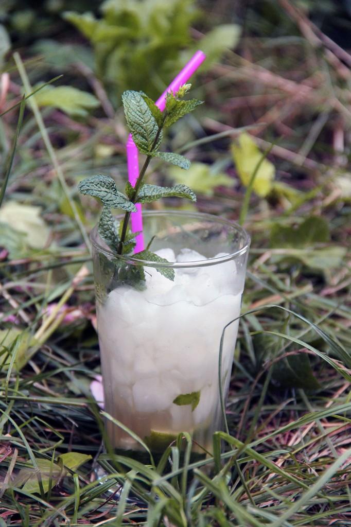 mojito-sans-alcool2