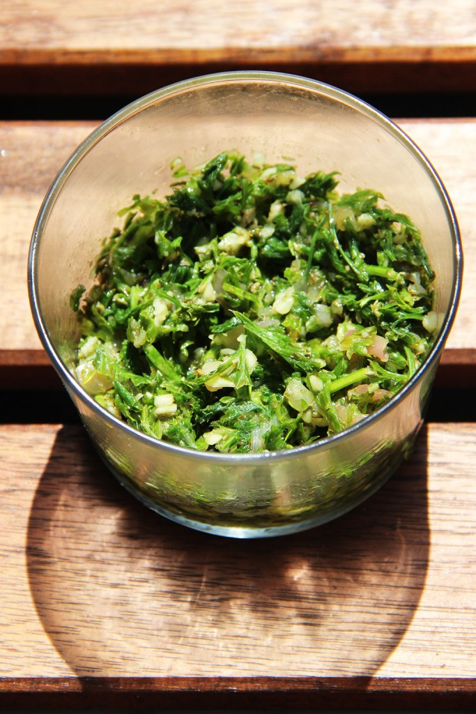 sauce-chimichurri-3