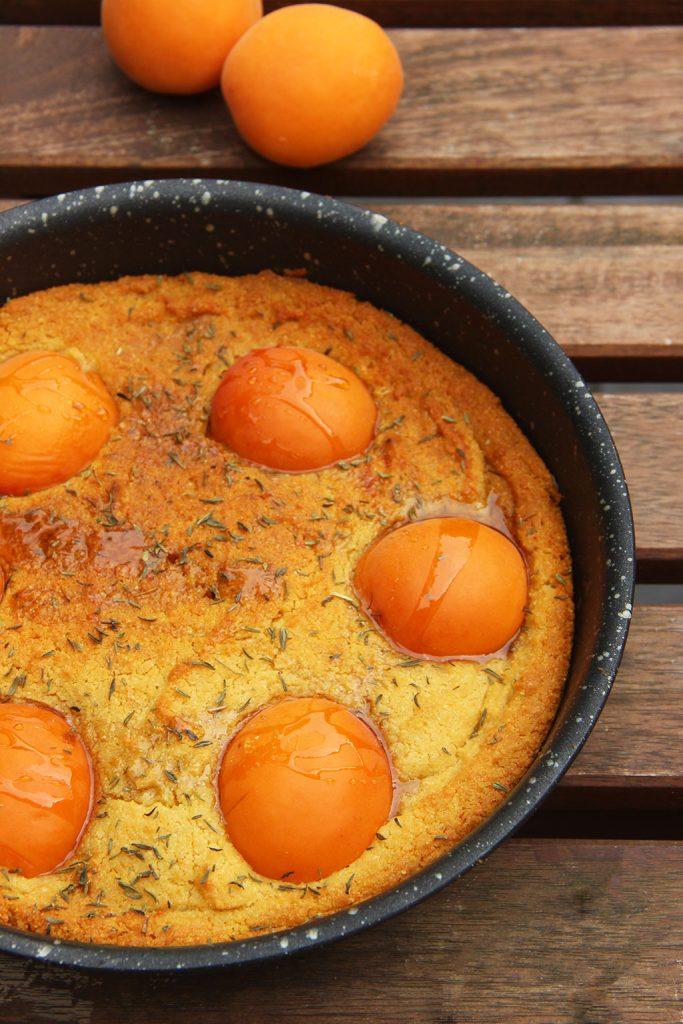 gateau-polenta-abricots-3